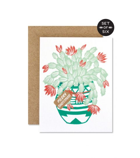Christmas Cactus Boxed Set