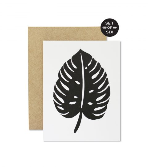 Monstera Boxed Set